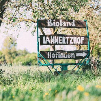 Lammertzhof-34 (Foto: Linda Hammer Fotografie)