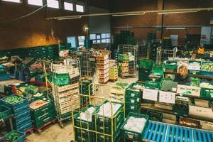 Gemüse-Abo Packhalle (Foto: Hojabr Riahi)