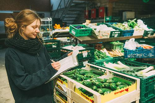 Gemüse packen (Foto: Hojabr Riahi)