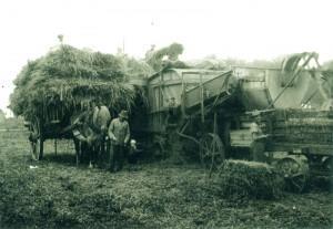 Der Lammertzhof in den 1960er Jahren